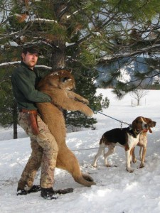 Idaho Mountain Lion Guided Hunts
