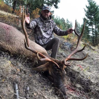 Idaho Archery Elk Hunting Outfitters