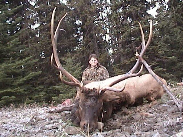 Idaho Elk Hunting