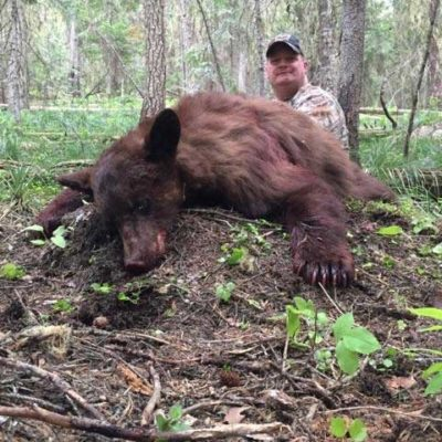 Idaho Bear Hunts