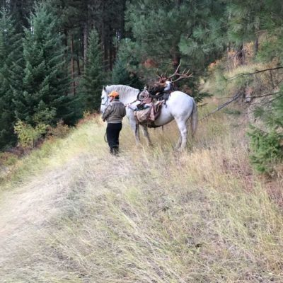 Best Places to Hunt in Idaho