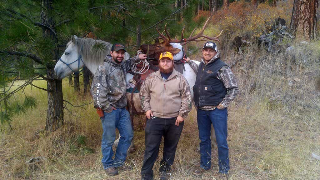 Guided Bull Elk Hunts in Idaho