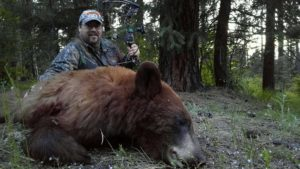 Best Spring Bear Hunts