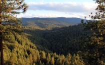 Idaho Elk Hunting Drop Camp