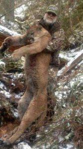 Cheap Mountain Lion Hunts