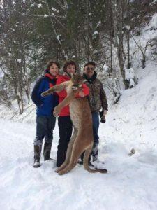 Idaho Cougar Hunt