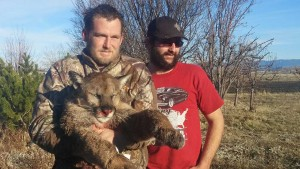 Mountain Lion Outfitters in Idaho