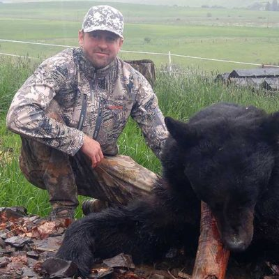 Idaho Guided Bear Hunts with Hounds