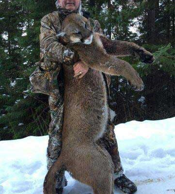 Miles High Outfitters for Monster Mountain Lions