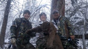 Guided Mountain Lion Hunts in Idaho