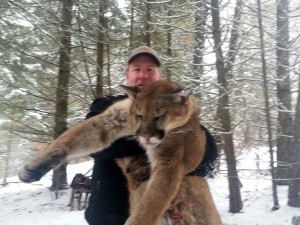 Idaho Mountain Lion Hunts