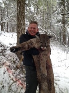 Trophy Idaho Mountain Lion hunting success