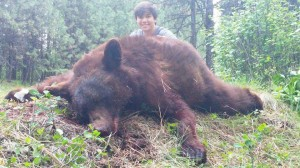 Color Phase Black Bear Outfitter