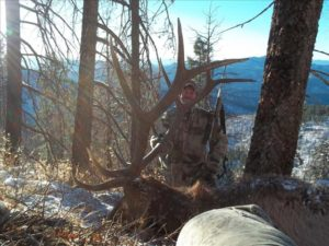 Hunt Idaho Bull Elk with Miles High Outfitters