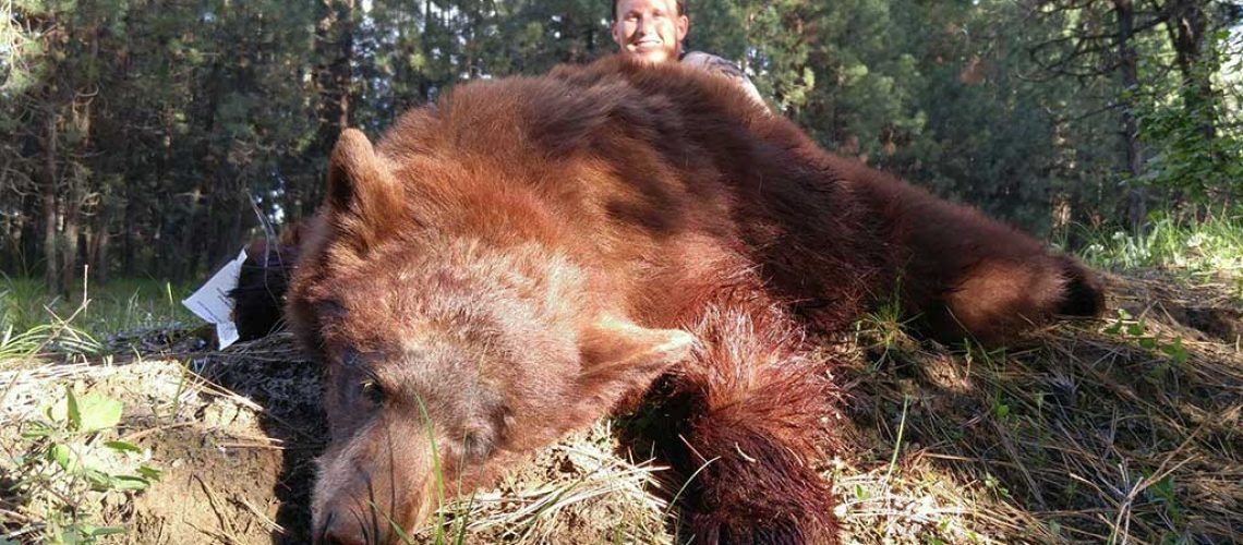 Affordable Black Bear Hunts